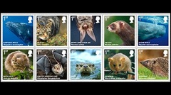 _47637603_stamps_466